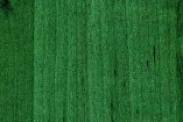 olse-olivove-zelena-861B918003F-8359-3F21-378C-96917E12519C.jpg