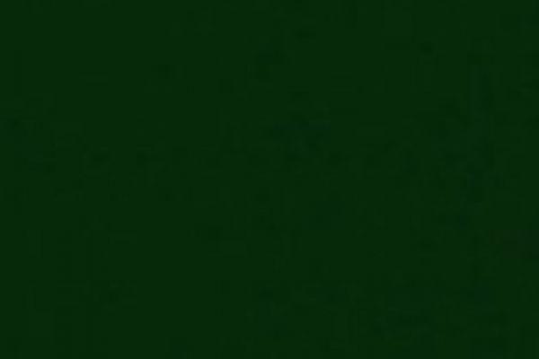 zelena-15373F55F74-513D-19B6-3380-C4BE006ACDC9.jpg