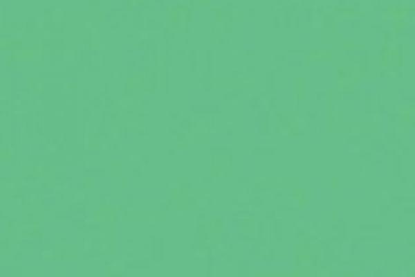 zelena-pastelova-154583C3697-BB40-B3B5-4F54-01A0FBAE93D0.jpg